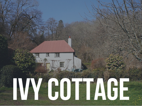 Ivy Cottage, Lustleigh