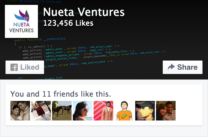 FB-Page-Plugin